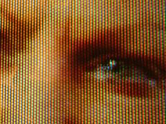 Screen and martinhoward