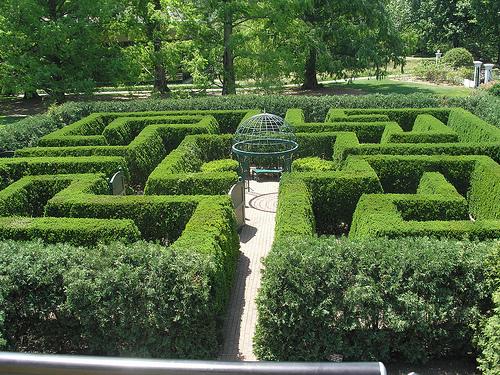 Hedge maze_Vironevaeh