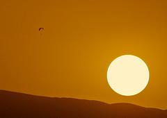 Sun and nima